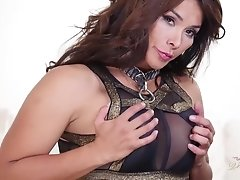 Vaniity in black and glittery gold shows off her thick and throbbing package